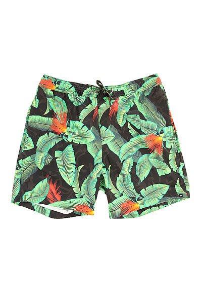 Шорты пляжные Quiksilver Glitched 17 Green Gecko