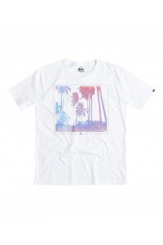 �������� Quiksilver Classic Tee Night Tees White