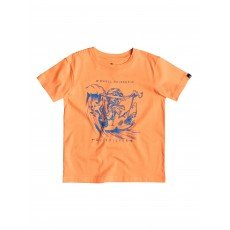 Футболка детская Quiksilver Seagull Raiser Tees Orange Pop