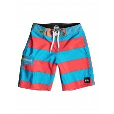 Шорты пляжные детские Quiksilver Everydbrigyou16 Everyday Brigg Hawai