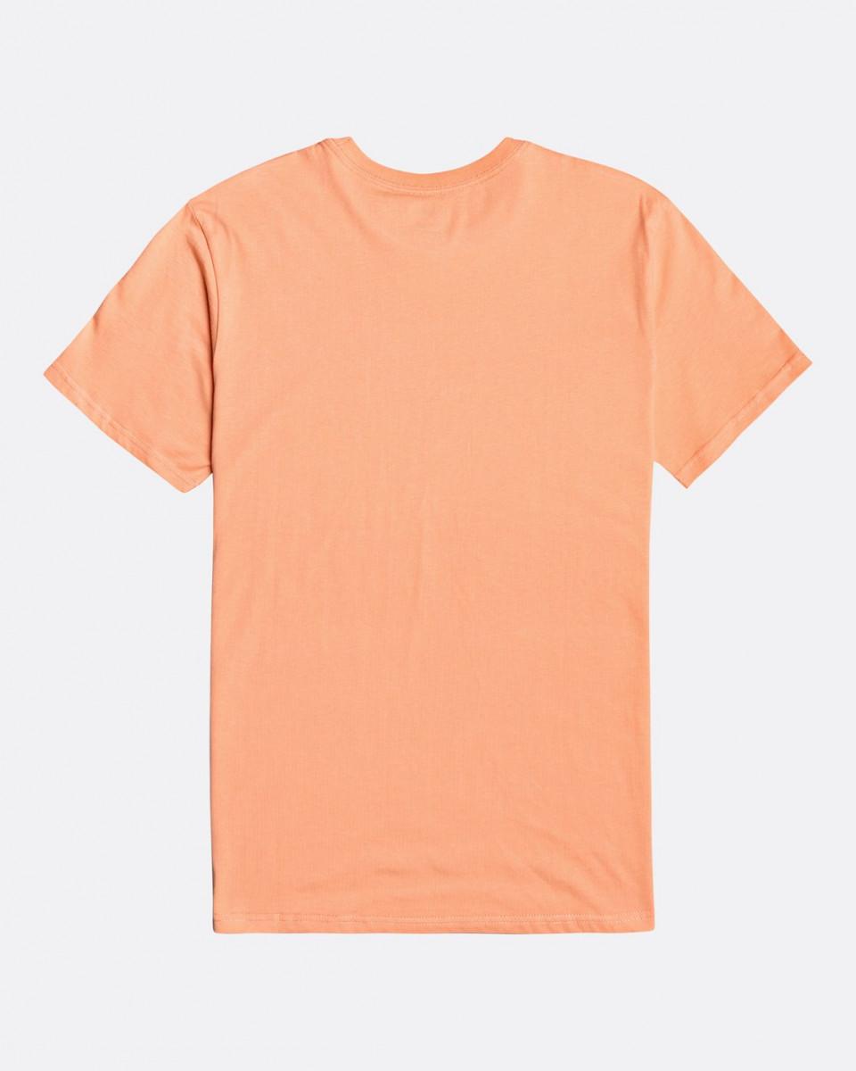 Мужская футболка Inversed