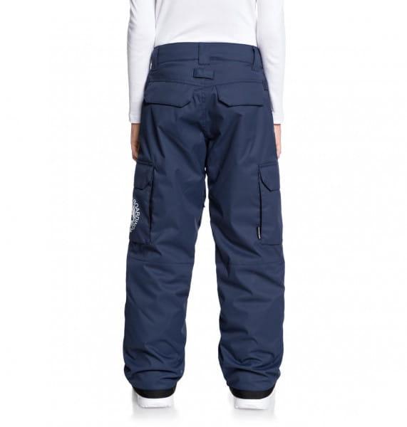 Мал./Сноуборд/Мальчикам/Штаны для сноуборда Детские сноубордические штаны Banshee 8-16