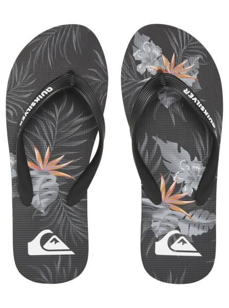 Муж./Обувь/Сланцы/Сланцы Мужские сланцы Molokai Everyday Paradise