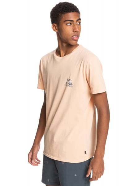 Муж./Одежда/Футболки, поло и лонгсливы/Футболки Мужская футболка Fresh Take