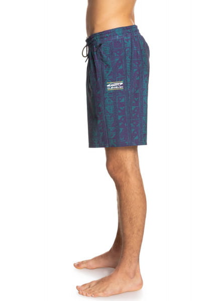 "Муж./Бордшорты/Пляжные шорты/Пляжные шорты Мужские бордшорты High Point Motion 17"""