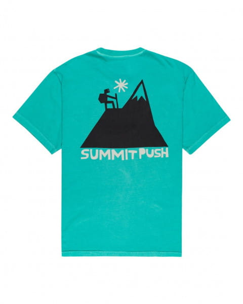 Муж./Одежда/Футболки, поло и лонгсливы/Футболки Мужская футболка Fernando Elvira Summit