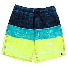 Шорты пляжные детские Quiksilver Wordwavesvlb12 Viridian Green