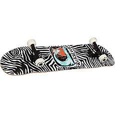 Скейтборд в сборе Quiksilver Zebra Tango White/Black 32 x 8 (20.3 см)