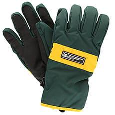 Перчатки сноубордические DC Franchise Glove Pine Grove