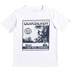 Футболка QUIKSILVER Templeofssyouth White