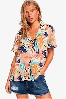 Мультиколор женская рубашка с коротким рукавом remind to forget