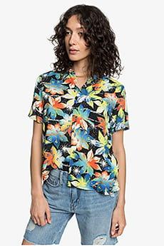 Серый женская рубашка с коротким рукавом womens