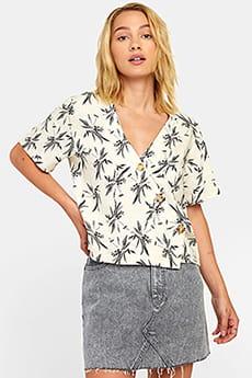 Коричневый рубашка farrell
