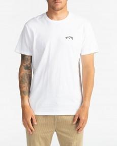 Мультиколор мужская футболка arch wave