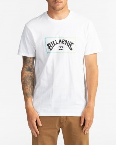 Мультиколор мужская футболка arch