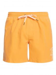 """Голубой мужские плавательные шорты surfwash 15"""""""