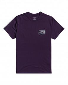 Мужская футболка Adventure Division Arch Wave
