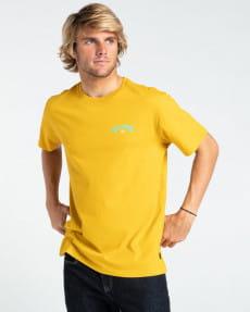 Мужская футболка Arch Fill